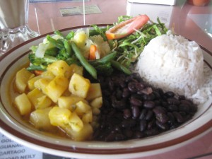 rice and beans + potatoes and salad