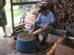A cinnamon farmer shaving the bark of a freshly-harvested tree of deliciousness.